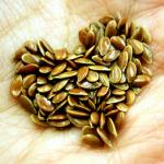 Semillas-de-lino-150x150 10 alimentos que levantan el ánimo