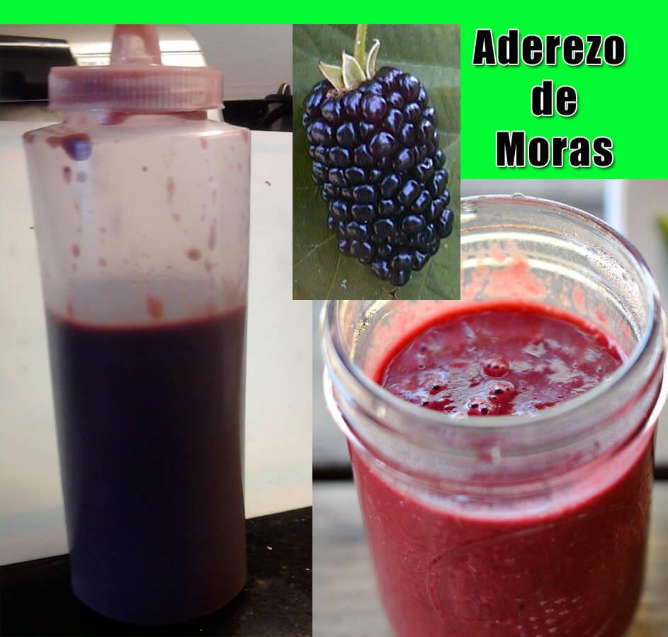 Aderezo-de-Moras Recetas Sin Carne Para Cuaresma | Recetas Vegetarianas