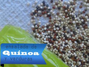 Quinoa-Mix-300x225 Ensalada de Quínoa y Verduras | Fácil - Rápida y Saludable Ensalada de Quinua