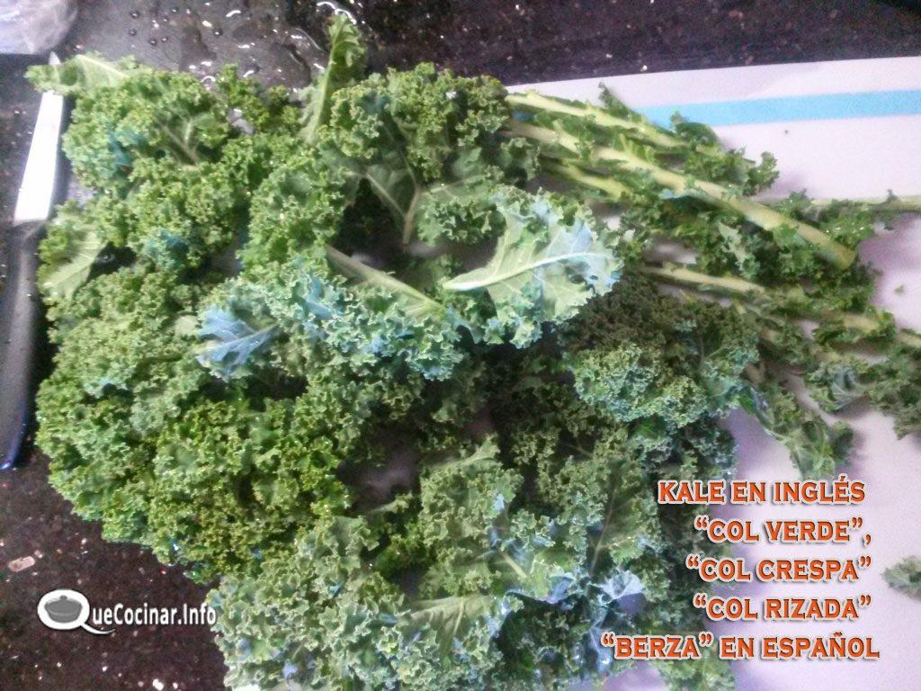 Kale-col-rizada-1024x768 Ensalada de Col Rizada, Alcachofa y Aguacate