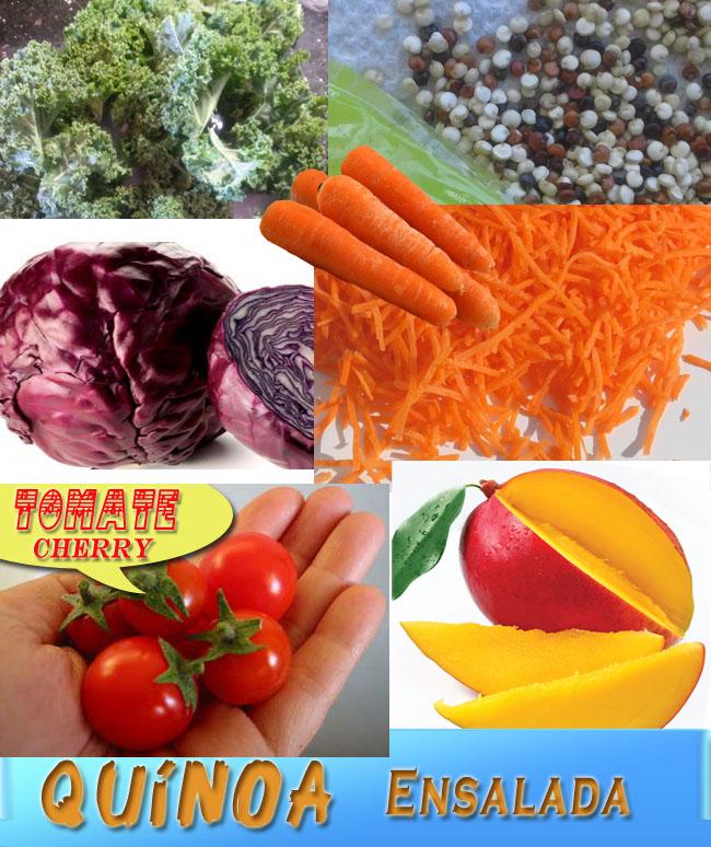 Quinoa-Ensalada-Ingredientes Ensalada de Quínoa, Col Rizada, Repollo y Mango | Recetas De Ensaladas