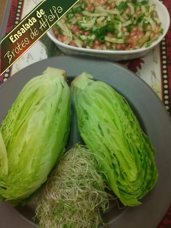 Ensalada-de-Brotes-de-Alfalfa-3 Ensalada De Brotes De Alfalfa | Que Hay Para Cocinar