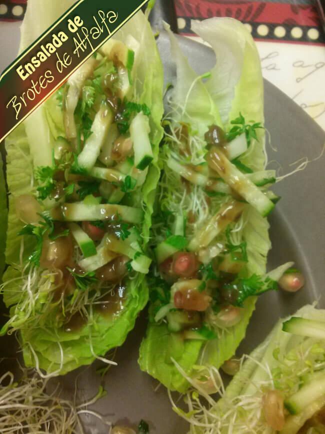 Ensalada-de-Brotes-de-Alfalfa-4 Ensalada De Brotes De Alfalfa | Que Hay Para Cocinar