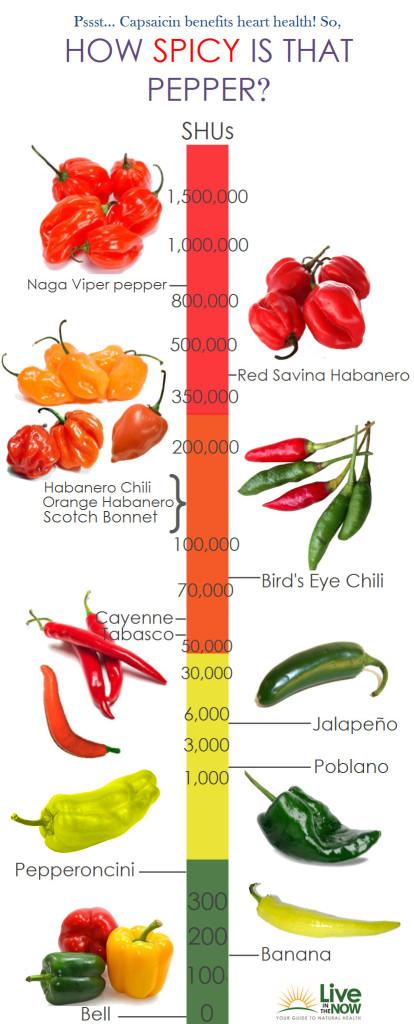 spicy-pepper-infographic-414x1024 Salsa de Aji Picante | Salsa de Ají Para Guardar